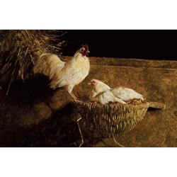 Leghorns Art Print by Jamie Wyeth