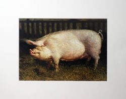 Portrait of a Pig Matted Art Print by Jamie Wyeth