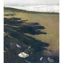 Raven's Grove Art Poster by Andrew Wyeth