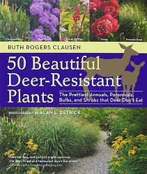 50 Beautiful Deer Resistant Plants