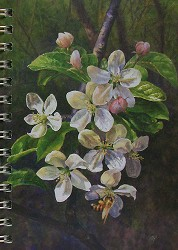 Crabapples Mini Journal
