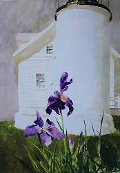 Lighthouse Iris Notecard