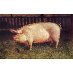 Portrait of a Pig Art Poster by Jamie Wyeth,1-19900-097-3