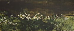 May Day Art Reproductiont by Andrew Wyeth
