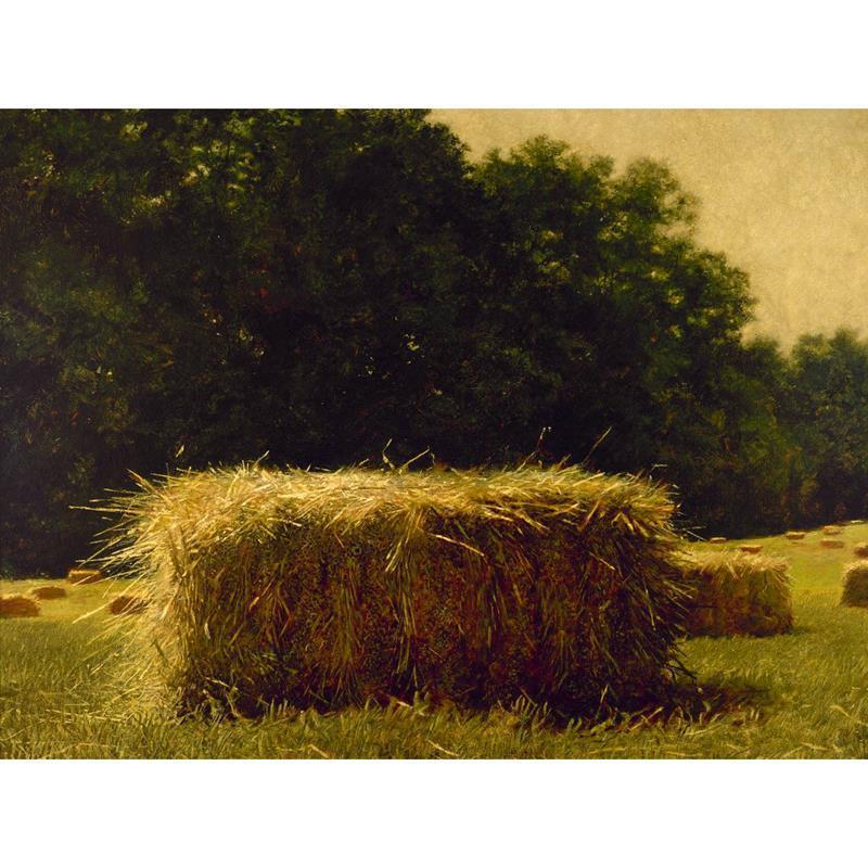 Bale Print — Jamie Wyeth,11-99-00082-5