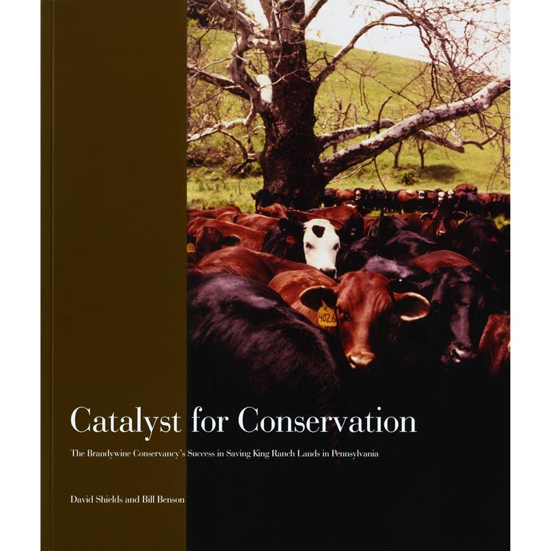 Catalyst For Conservation