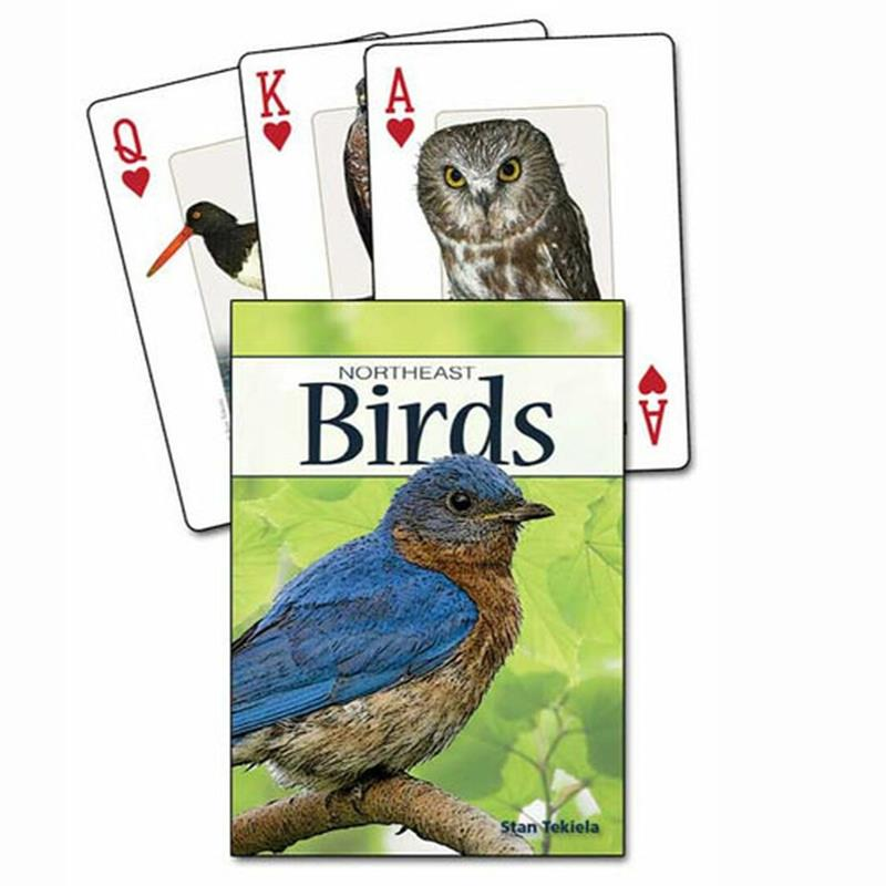 Birds of NorthEast Playing Cards